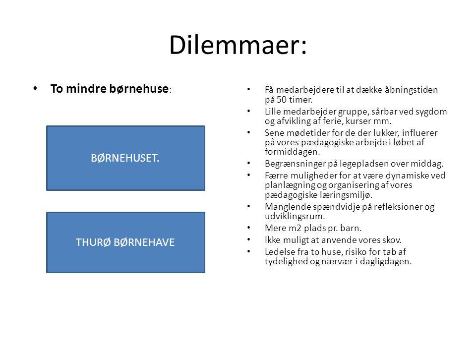 Dilemmaer: To mindre børnehuse: BØRNEHUSET. THURØ BØRNEHAVE