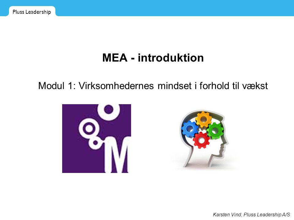 Modul 1: Virksomhedernes mindset i forhold til vækst