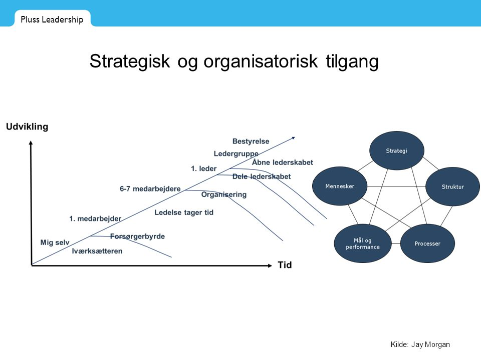 Strategisk og organisatorisk tilgang