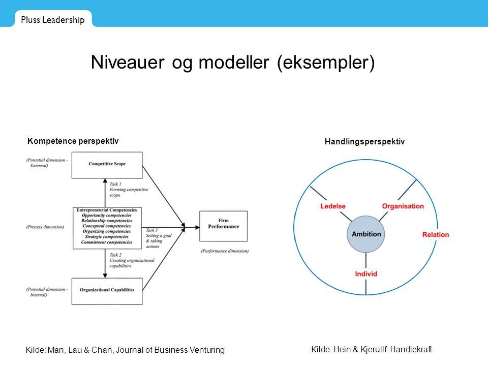 Niveauer og modeller (eksempler)