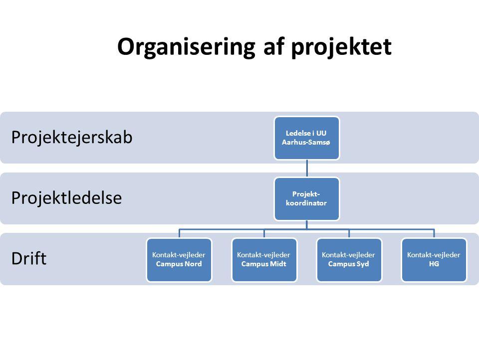 Organisering af projektet