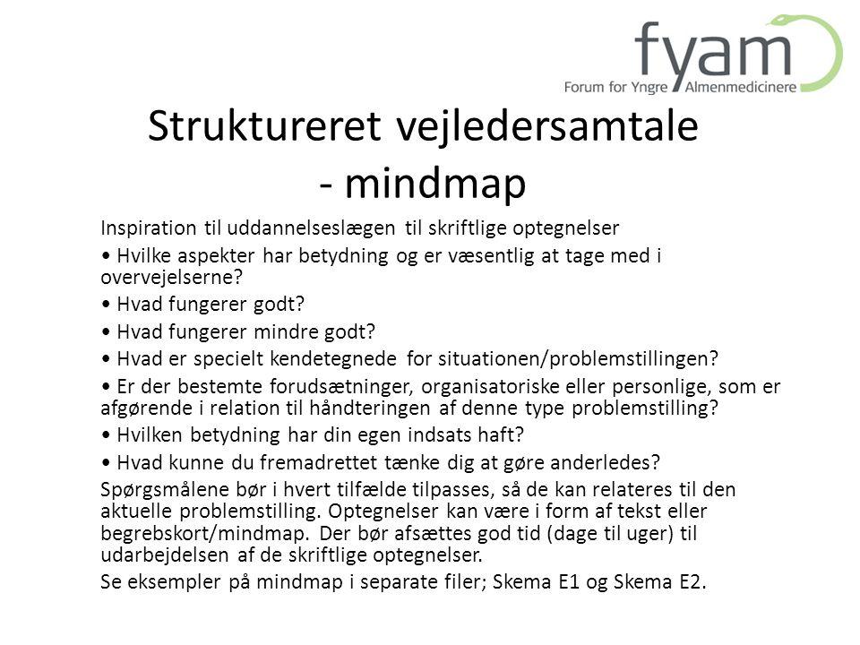 Struktureret vejledersamtale - mindmap