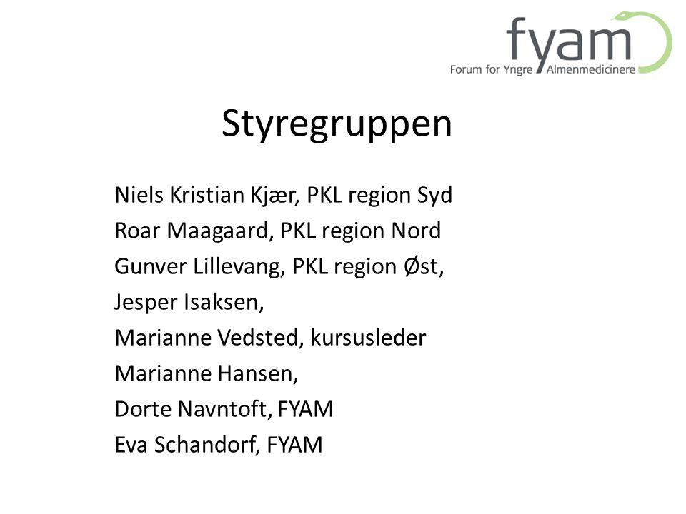Styregruppen Niels Kristian Kjær, PKL region Syd