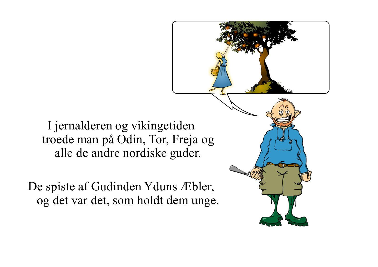 De spiste af Gudinden Yduns Æbler, og det var det, som holdt dem unge.