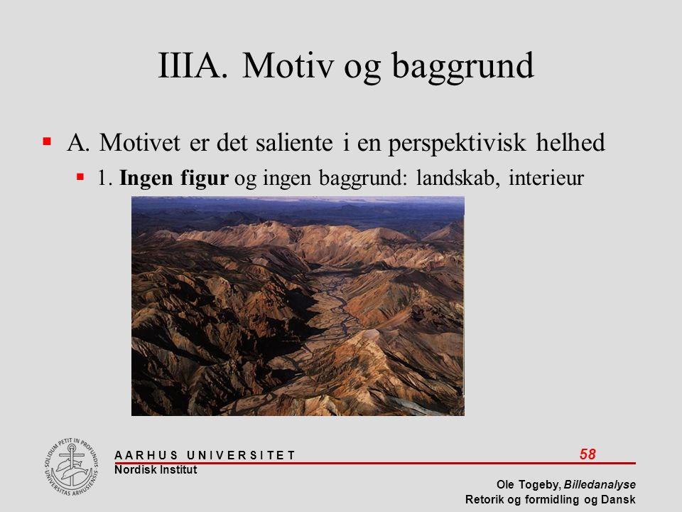 IIIA. Motiv og baggrund A. Motivet er det saliente i en perspektivisk helhed.