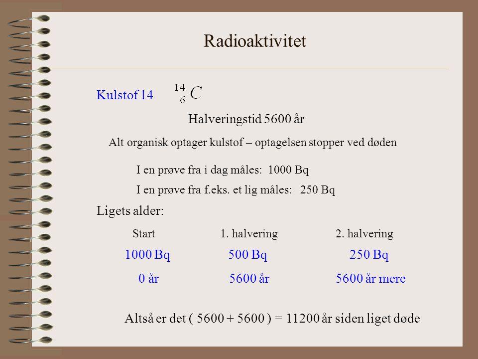 Radioaktivitet Kulstof 14 Halveringstid 5600 år Ligets alder: 1000 Bq
