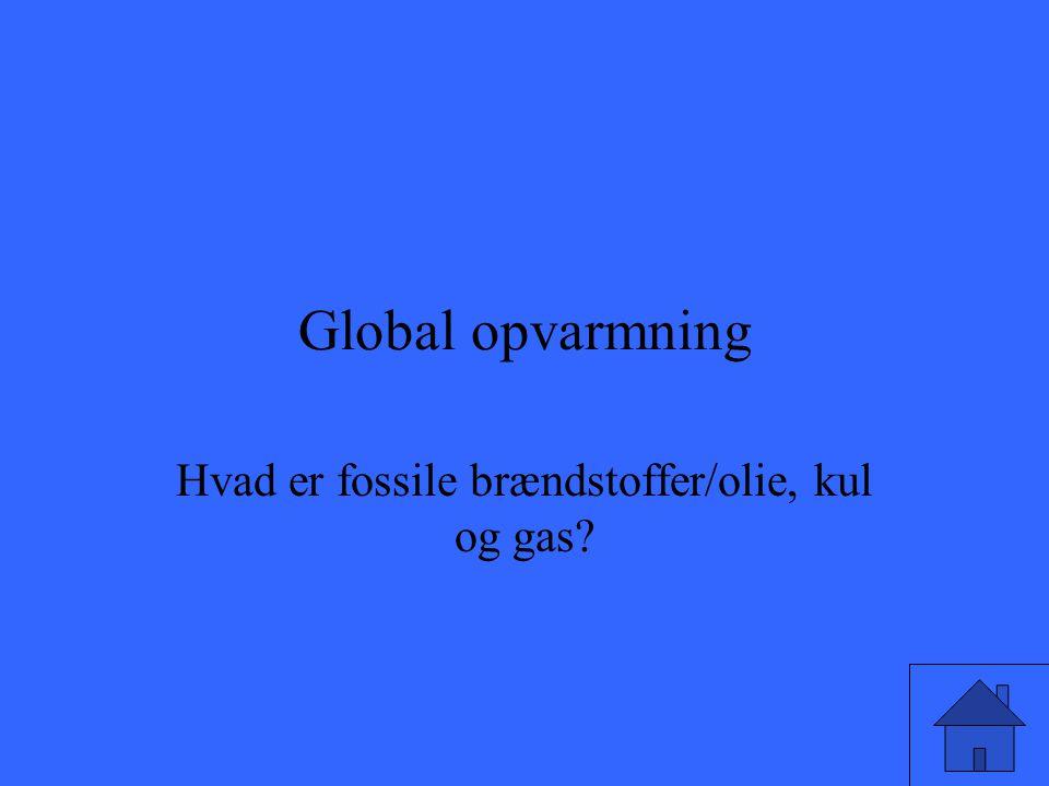 Hvad er fossile brændstoffer/olie, kul og gas
