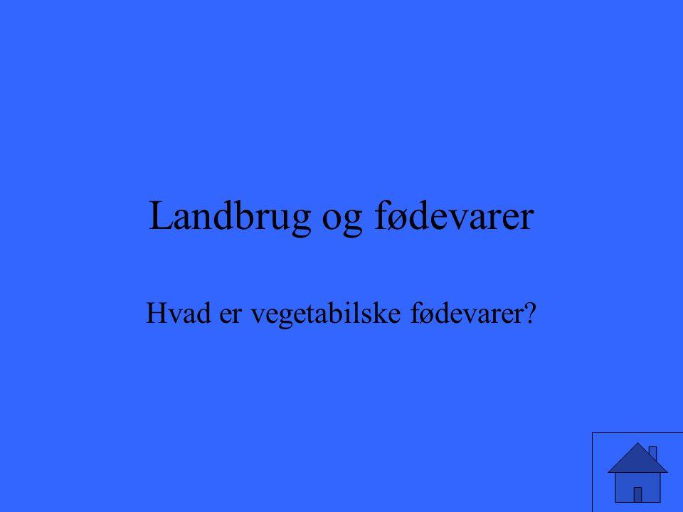 Hvad er vegetabilske fødevarer