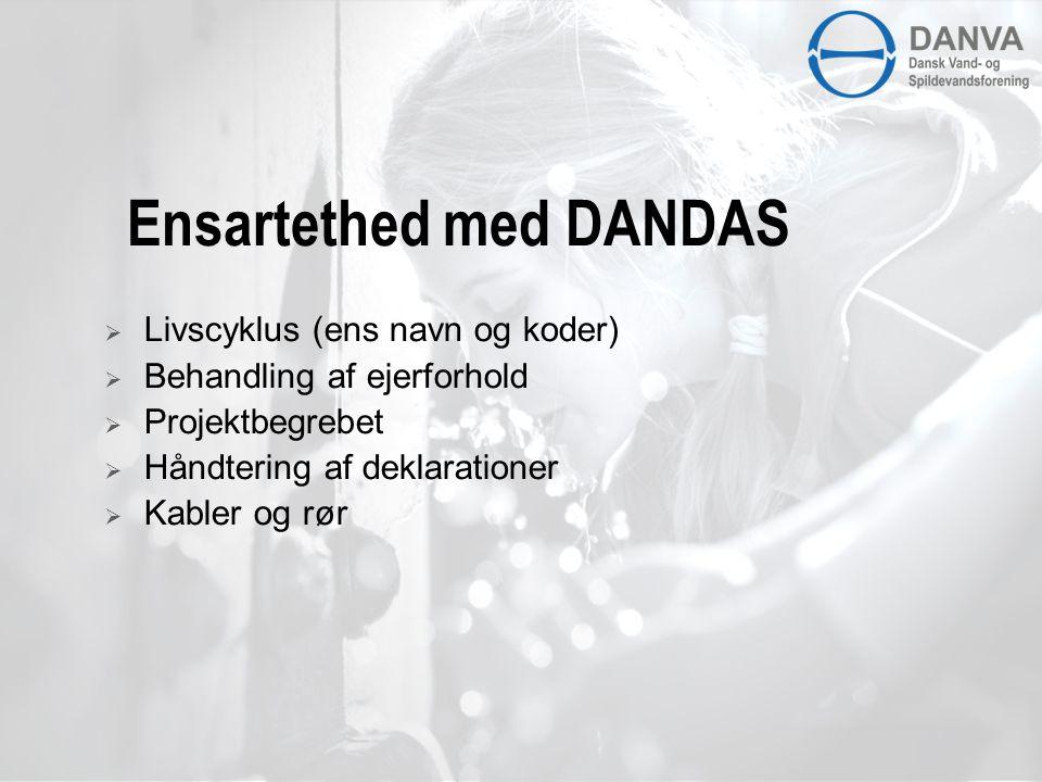 Ensartethed med DANDAS