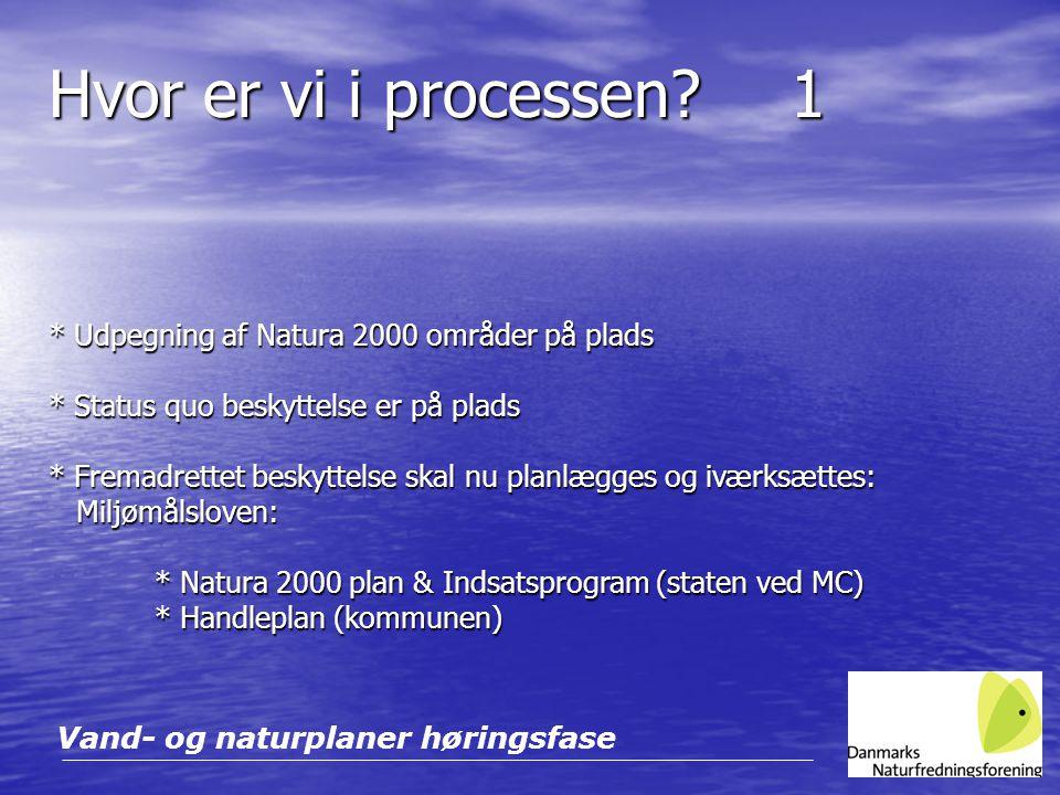 Hvor er vi i processen 1 * Udpegning af Natura 2000 områder på plads * Status quo beskyttelse er på plads.