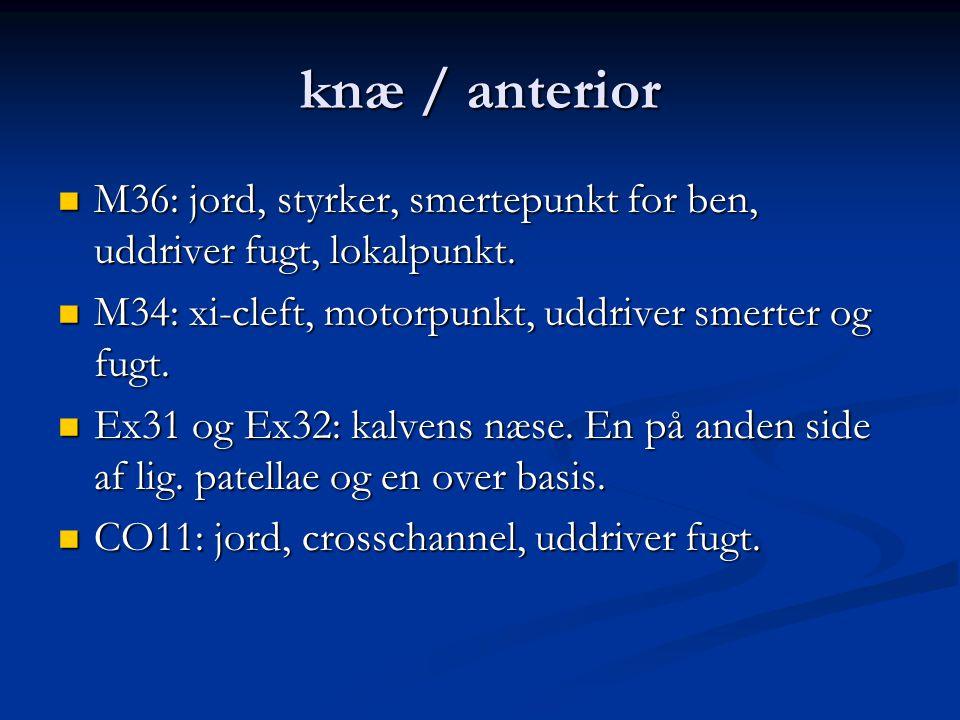 knæ / anterior M36: jord, styrker, smertepunkt for ben, uddriver fugt, lokalpunkt. M34: xi-cleft, motorpunkt, uddriver smerter og fugt.
