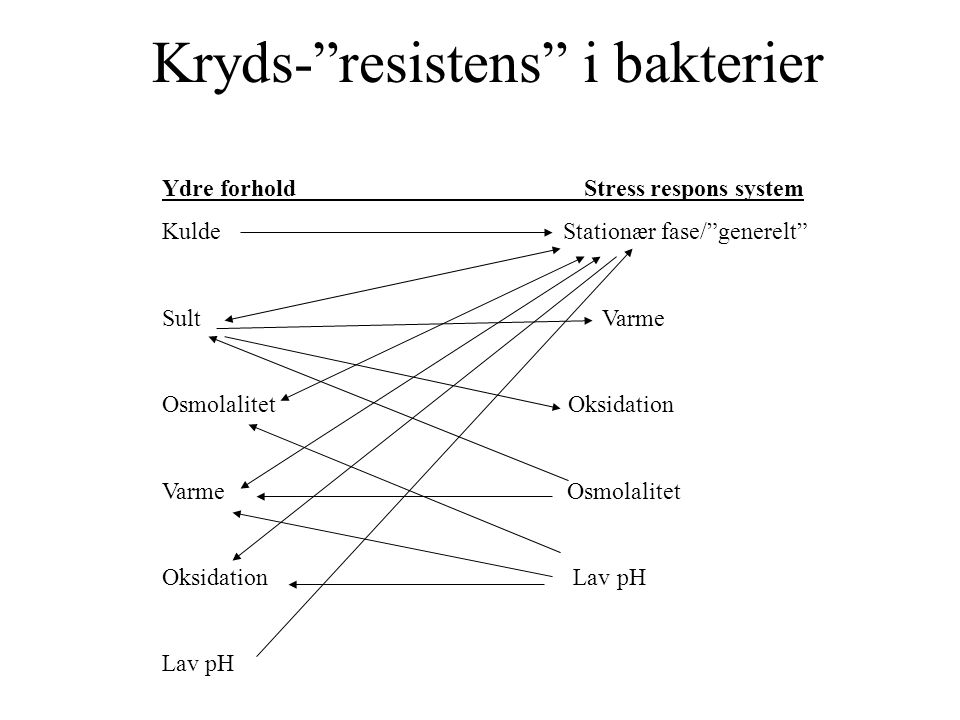 Kryds- resistens i bakterier