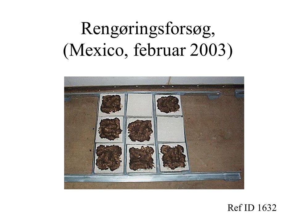 Rengøringsforsøg, (Mexico, februar 2003)