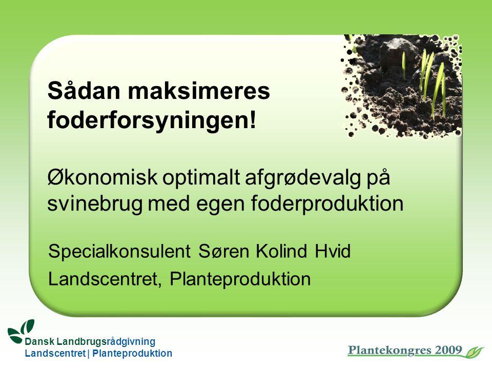 Specialkonsulent Søren Kolind Hvid Landscentret, Planteproduktion