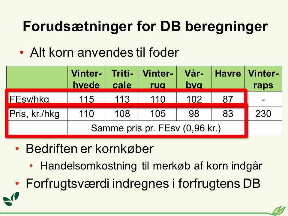 Forudsætninger for DB beregninger