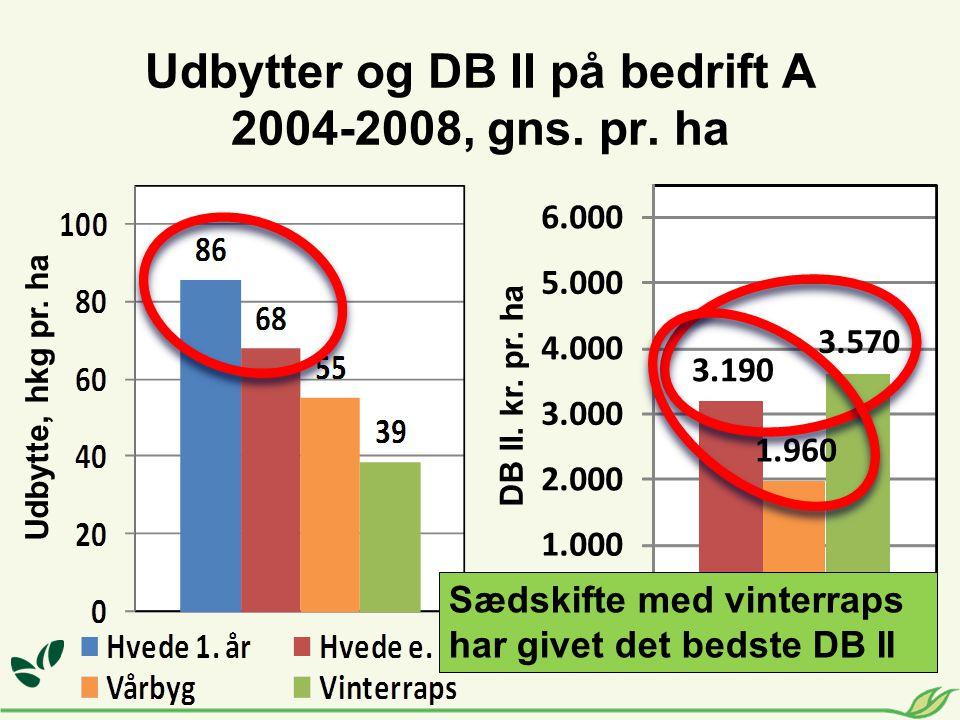Udbytter og DB II på bedrift A 2004-2008, gns. pr. ha