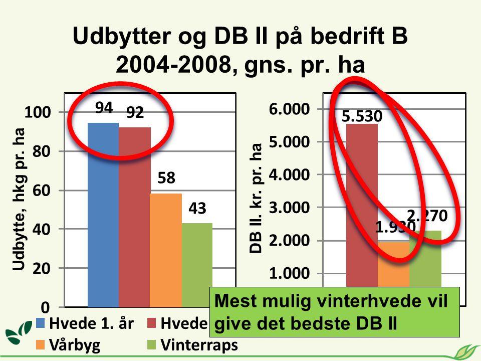 Udbytter og DB II på bedrift B 2004-2008, gns. pr. ha