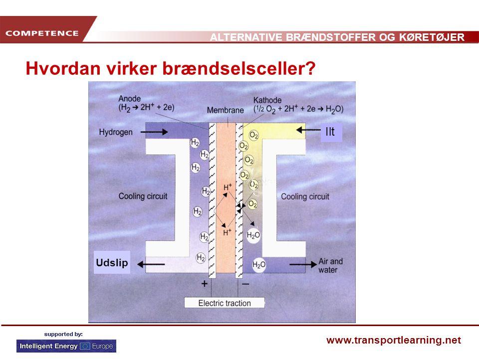 Hvordan virker brændselsceller