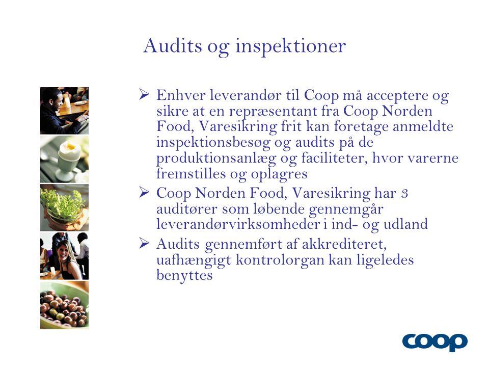 Audits og inspektioner