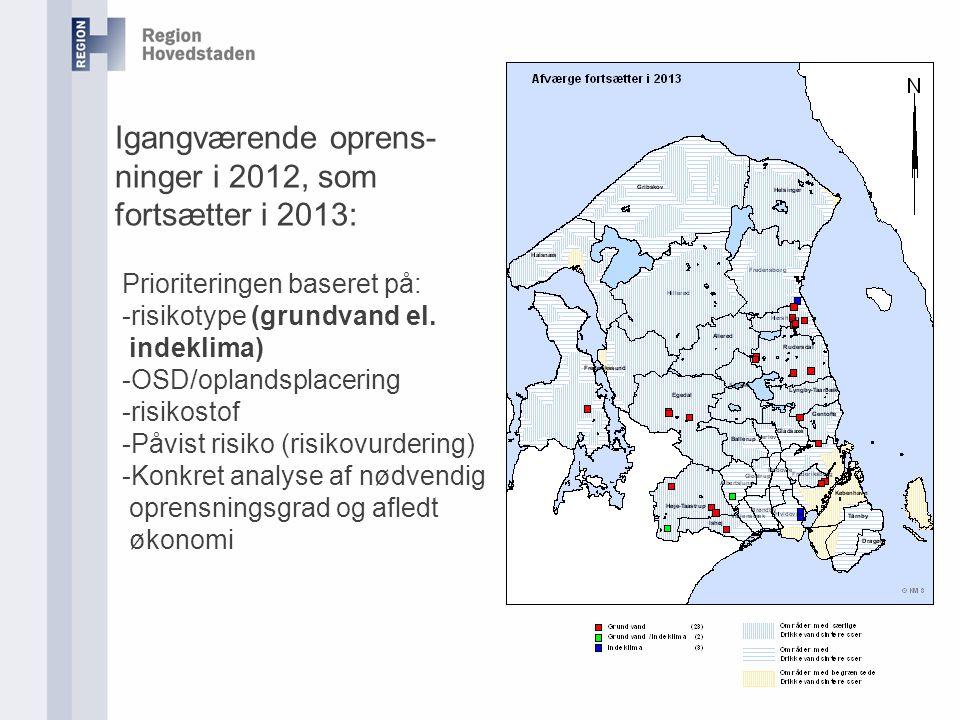 Igangværende oprens- ninger i 2012, som fortsætter i 2013: