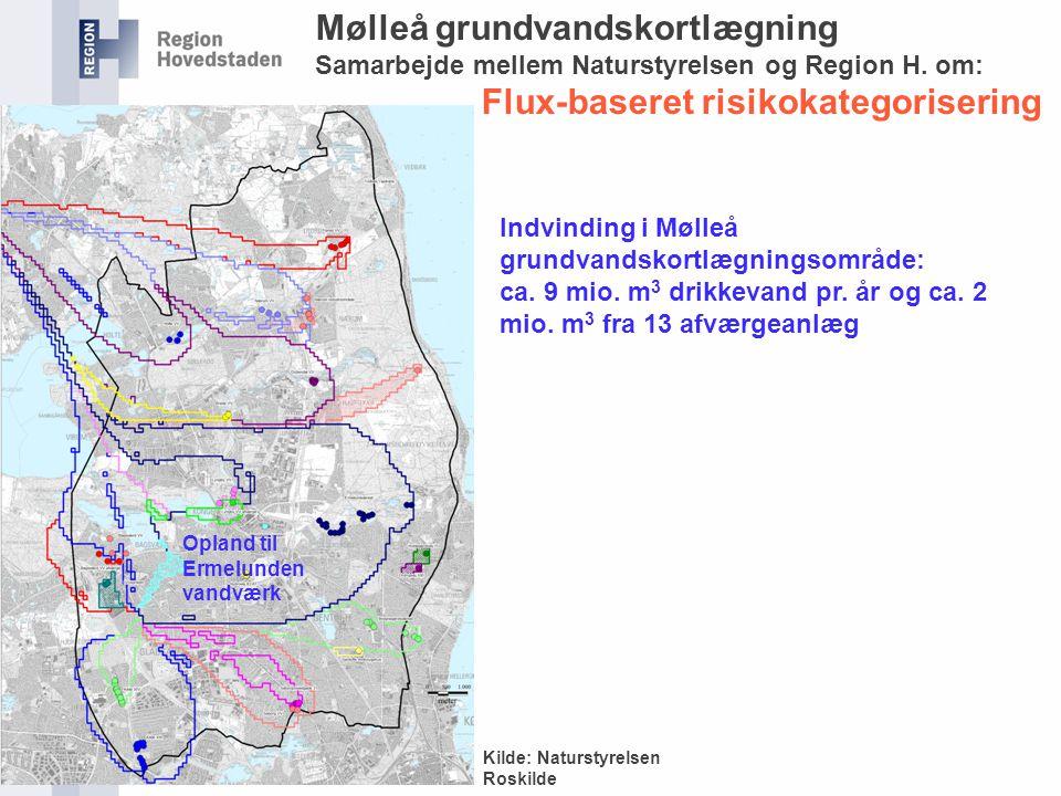 Mølleå grundvandskortlægning Flux-baseret risikokategorisering