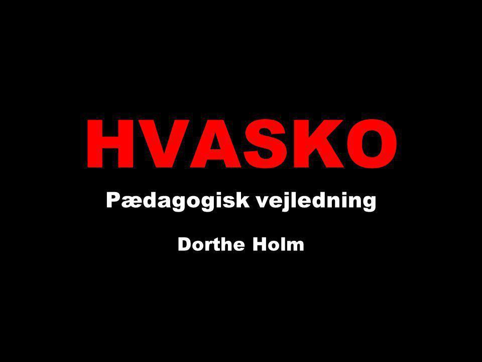 Pædagogisk vejledning Dorthe Holm