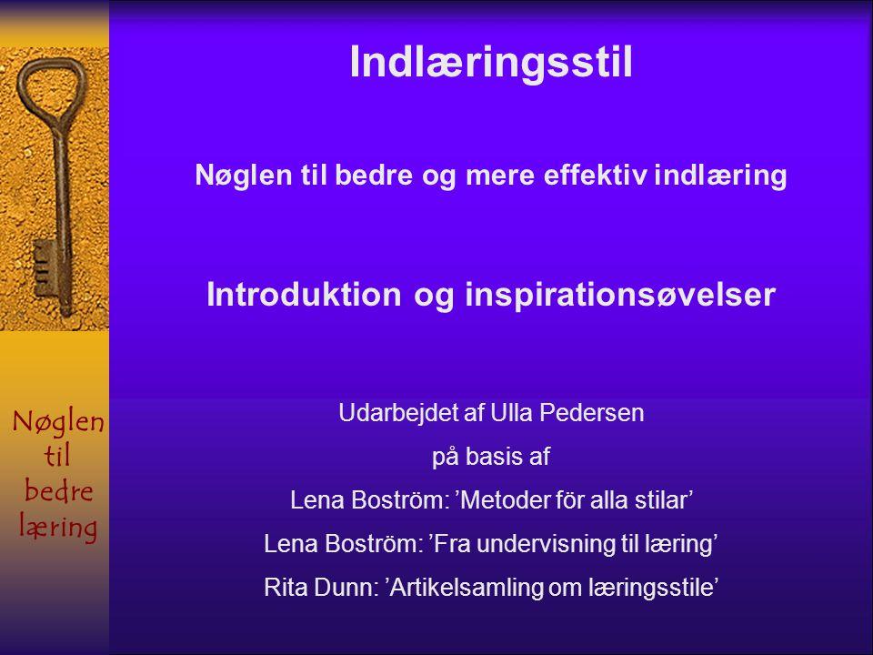 Indlæringsstil Introduktion og inspirationsøvelser