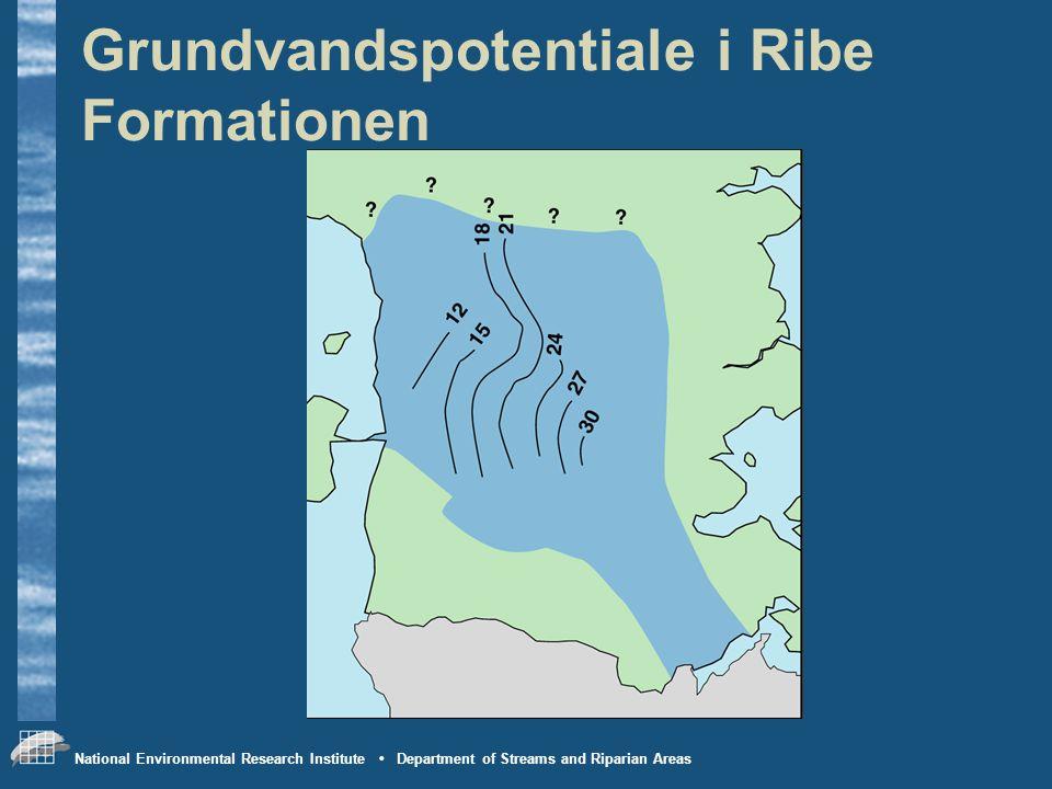 Grundvandspotentiale i Ribe Formationen