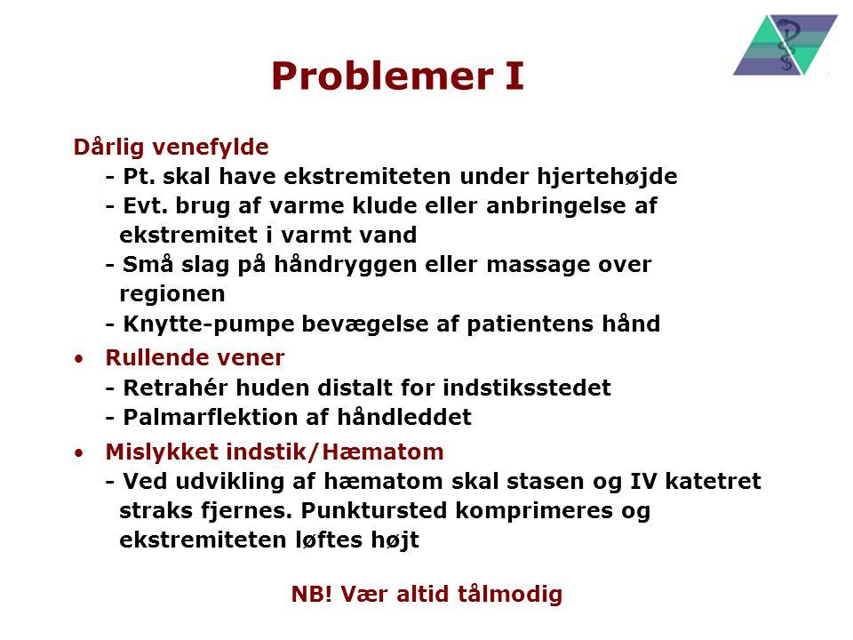 Problemer I