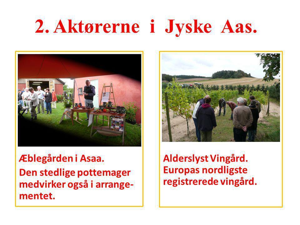 2. Aktørerne i Jyske Aas. Æblegården i Asaa. Den stedlige pottemager medvirker også i arrange-mentet.