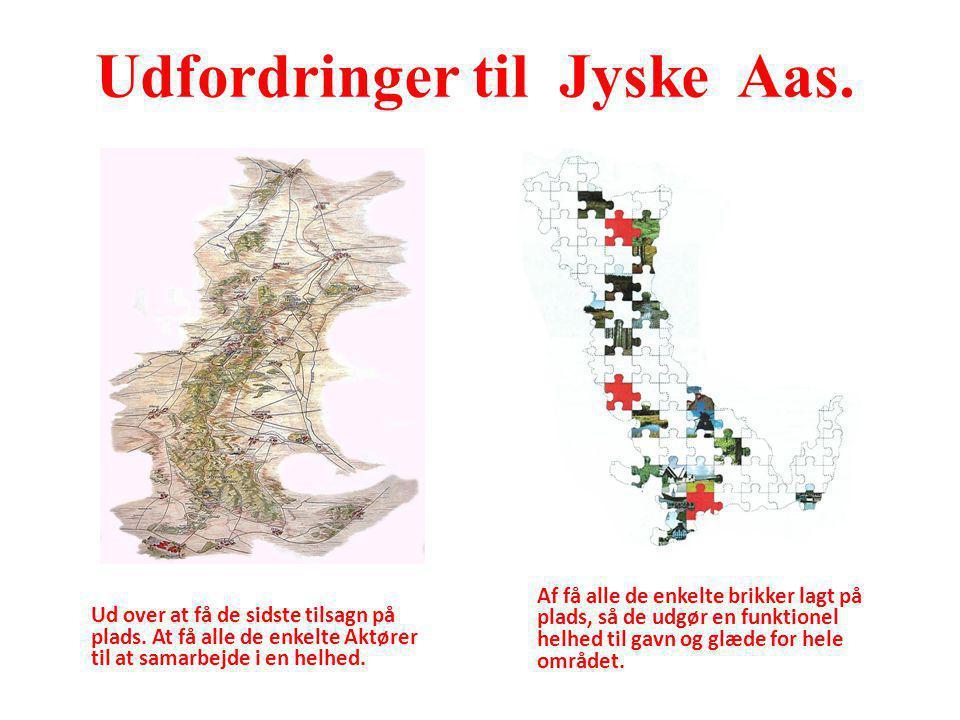 Udfordringer til Jyske Aas.