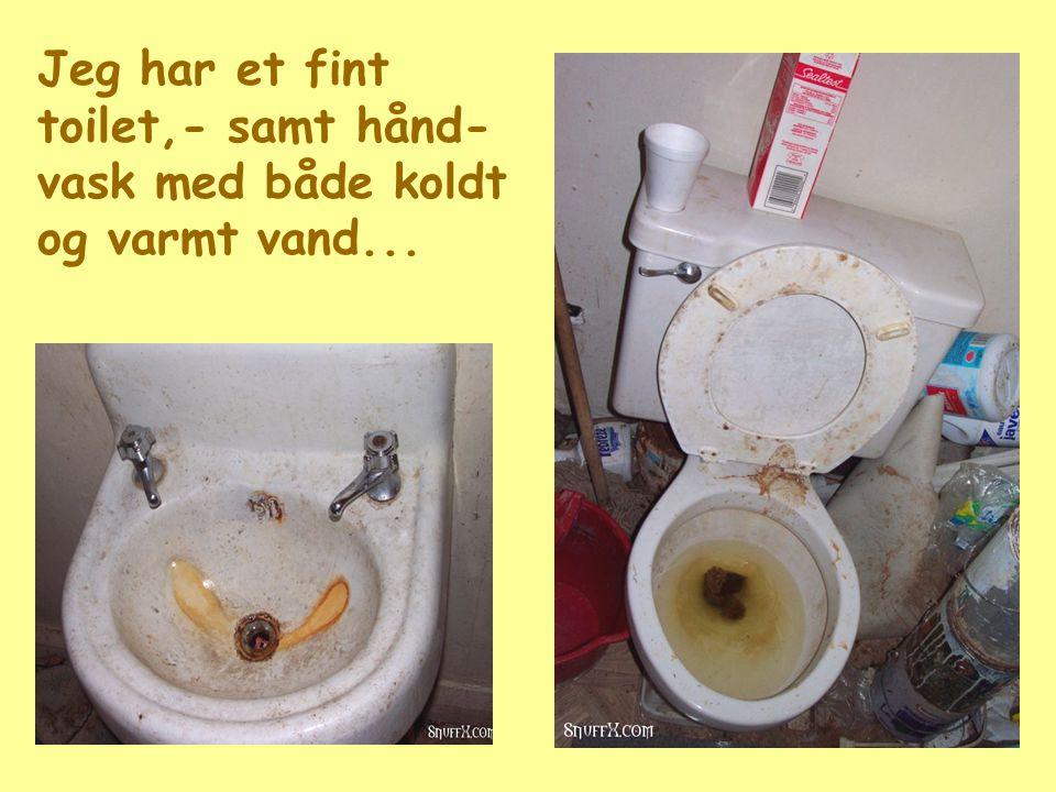 Jeg har et fint toilet,- samt hånd-vask med både koldt og varmt vand...
