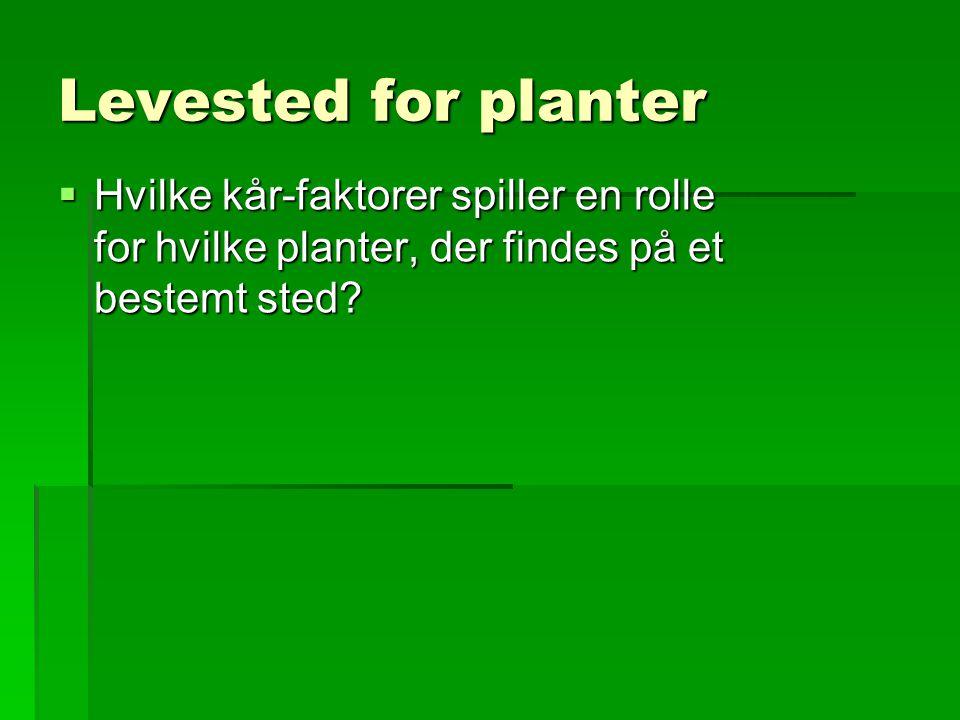 Levested for planter Hvilke kår-faktorer spiller en rolle for hvilke planter, der findes på et bestemt sted