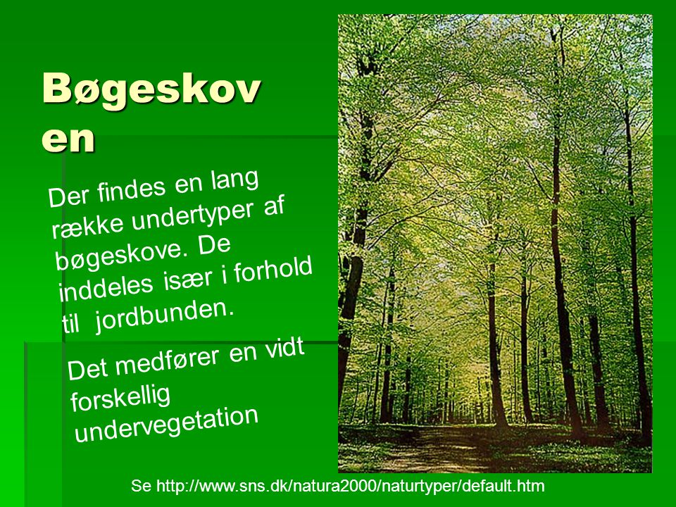 Se http://www.sns.dk/natura2000/naturtyper/default.htm