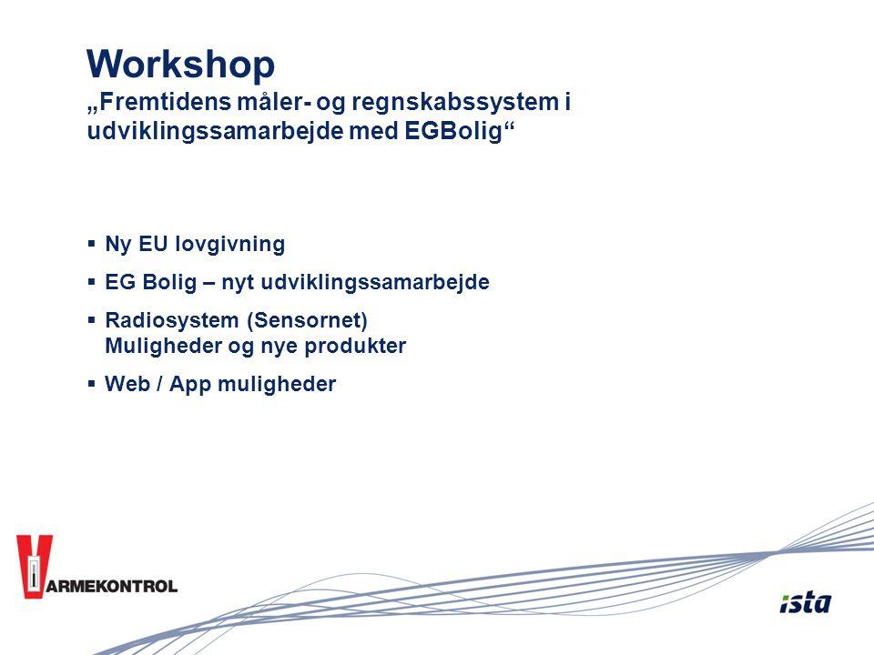 """Workshop """"Fremtidens måler- og regnskabssystem i udviklingssamarbejde med EGBolig"""