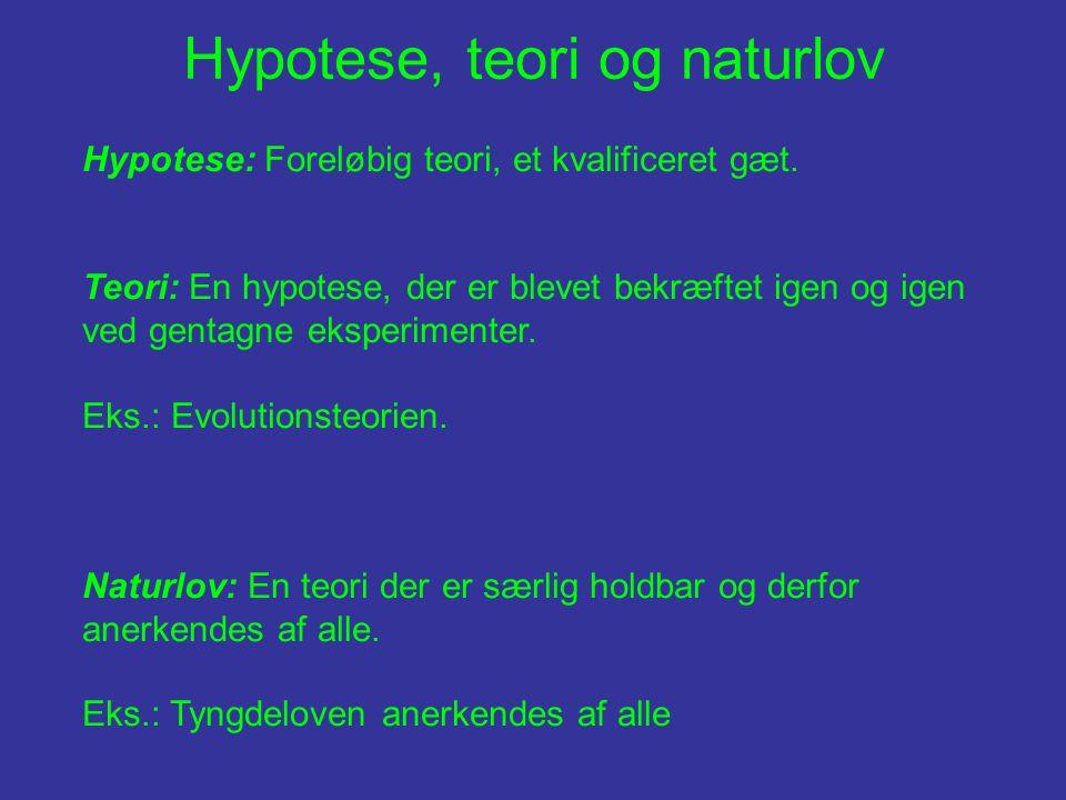 Hypotese, teori og naturlov