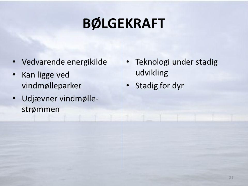 BØLGEKRAFT Vedvarende energikilde Kan ligge ved vindmølleparker