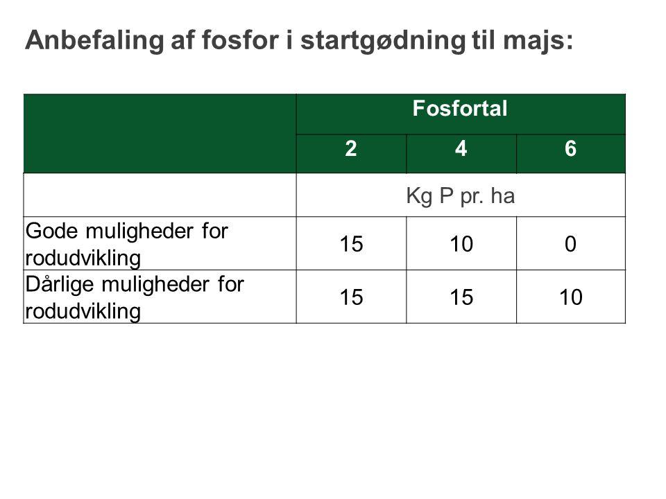 Anbefaling af fosfor i startgødning til majs: