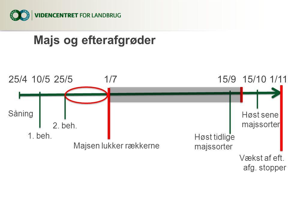 Majs og efterafgrøder 25/4 10/5 25/5 1/7 15/9 15/10 1/11 Såning