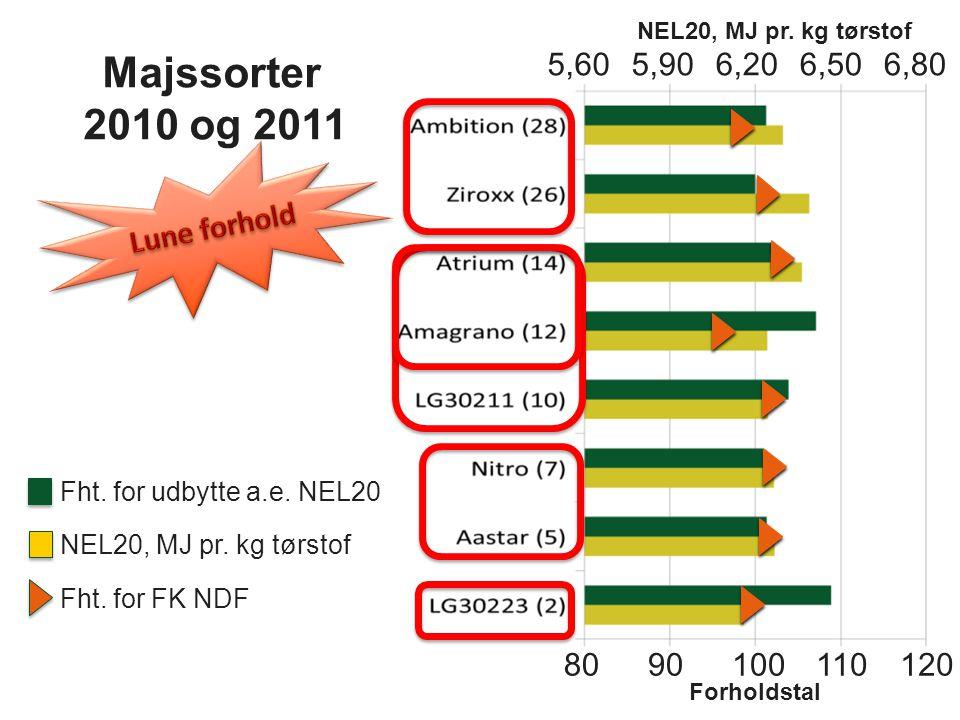 Majssorter 2010 og 2011 5,60 5,90 6,20 6,50 6,80 Lune forhold 80 90