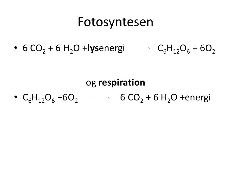 Fotosyntesen 6 CO2 + 6 H2O +lysenergi C6H12O6 + 6O2 og respiration