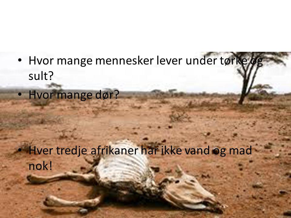 Hvor mange mennesker lever under tørke og sult