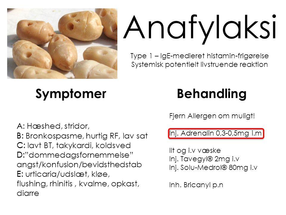 Anafylaksi Symptomer Behandling A: B: C: D: E: A: Hæshed, stridor,