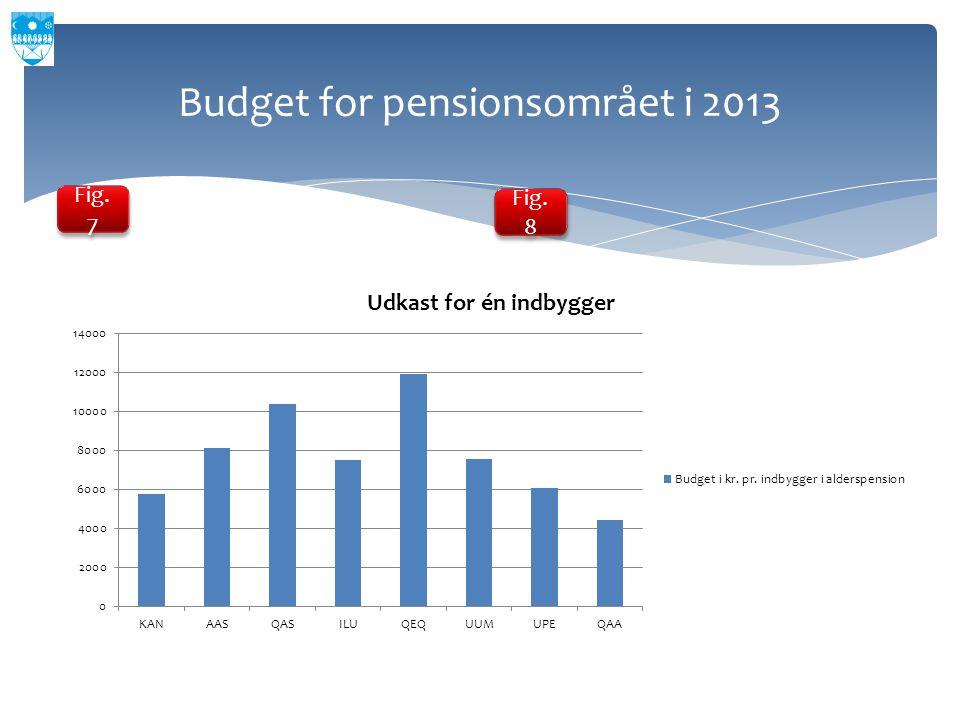 Budget for pensionsområet i 2013