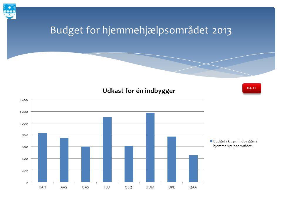 Budget for hjemmehjælpsområdet 2013