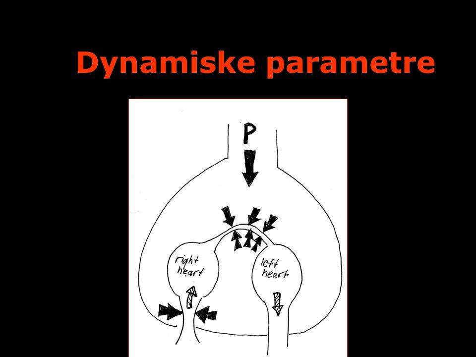 Dynamiske parametre FYA Symposium 16/11 2009