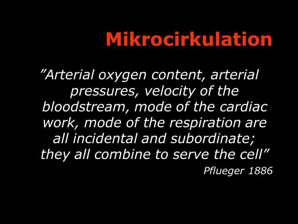 Mikrocirkulation