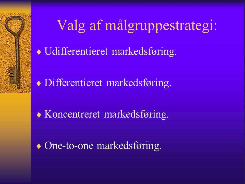 Valg af målgruppestrategi: