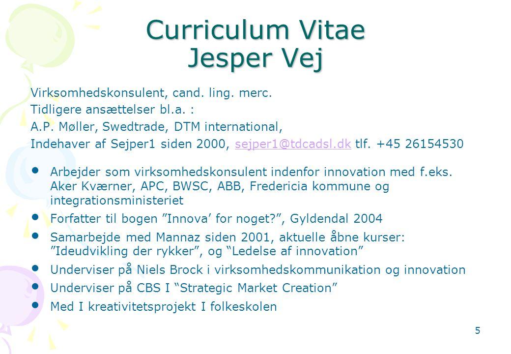 Curriculum Vitae Jesper Vej