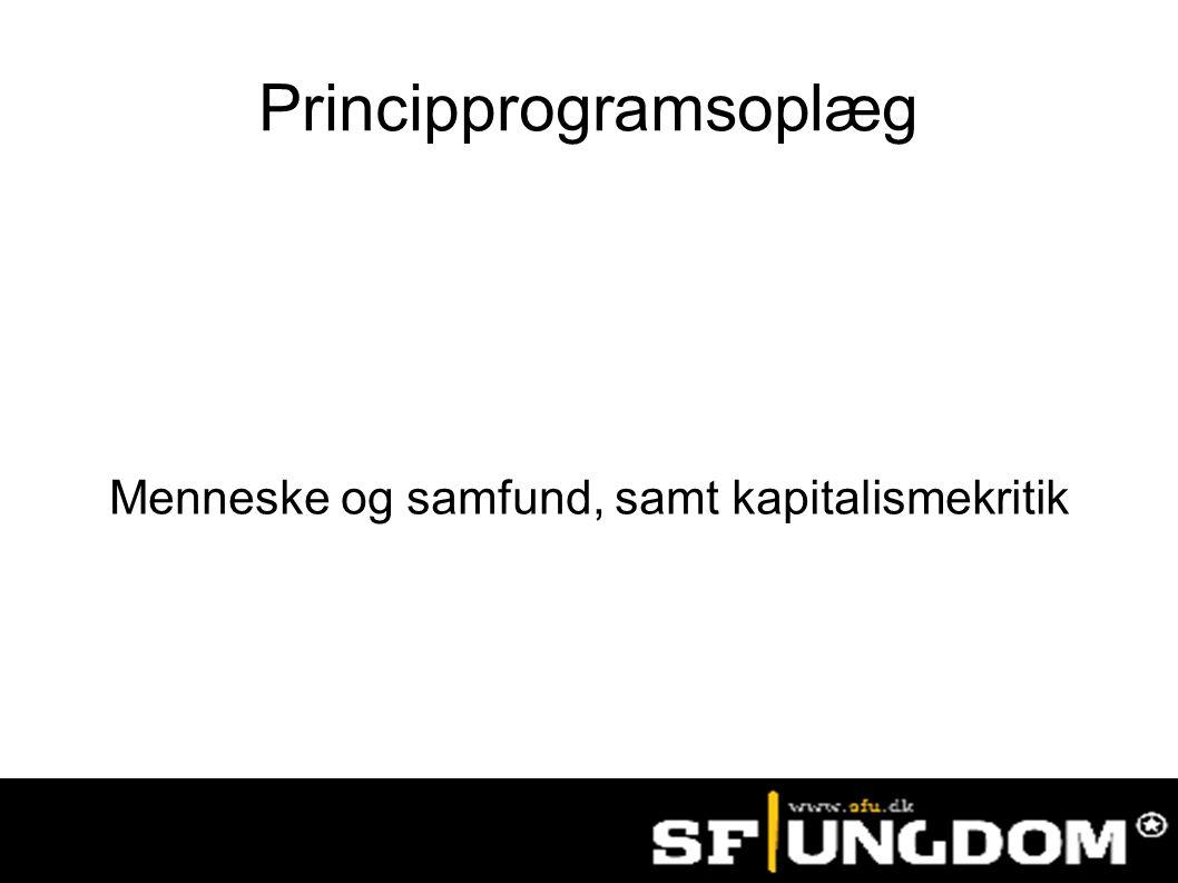 Principprogramsoplæg